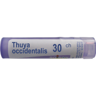Boiron Thuya occidentalis 30 CH 4 g - thuya_occidentalis_30ch.png